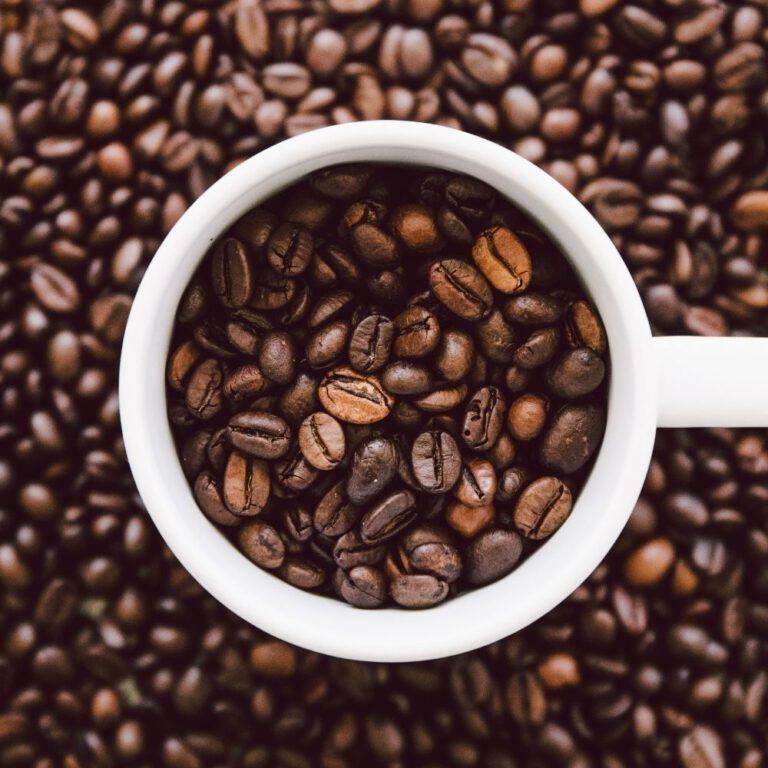 Kaffeebohne - kaffeebar - franken - messe - mieten - buchen